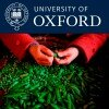 Oxford Impact Investing Program podcasts feature the Foundation